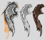 Wing,Dirty,Grunge,Vector,Feather,Design Element,Design,Black Color,Ornate,Ilustration,White,Drawing - Art Product,Set,Ink,Image,Part Of,Group of Objects,Vector Cartoons,Vector Ornaments,Illustrations And Vector Art,No People