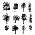 Nature,Drawing - Art Product,Ink,Drawing - Activity,Tree,Decoration,Illustration,Vector