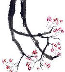 Watercolor Painting,Flower,Painting,Ink and Brush,East Asian Culture,Plum Blossom,Zen-like,Springtime,Twig,Plant,Painted Image,Nature,Simplicity,Spring,Nature