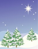 Snow,Pine Tree,Tree,Wrapped,Star - Space,Winter,Sky,Three Objects,Three People,Three Animals,Landscape,Night,Shiny,Cold - Termperature,Bright,Spirituality,Frost,Vector,Illustrations And Vector Art,illustraton,Season,White,Frozen