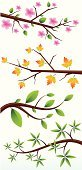 Branch,Leaf,Twig,Vector,Autumn,Cherry Blossom,Flower,Nature,Ilustration,Summer,Nature,Illustrations And Vector Art
