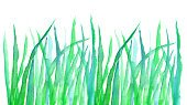 Horizontal,Abstract,No People,Background,Illustration,Nature,Backgrounds,Grass