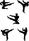 Karate,Martial Arts,Silhouette,Kickboxing,Symbol,Kicking,Kung Fu,martial,sidekick,Jumping,Human Foot,Sport,Belt,Fighting,Japanese Culture,Men,Punching,Vector,Exercising,Black Color,People,White,Set,Athlete,Ilustration,Strength,Isolated,Concepts And Ideas,Illustrations And Vector Art,combative,Power,People,Vector Cartoons,Action