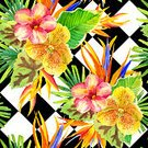 Square,No People,Moth Orchid,Computer Graphics,Illustration,Nature,Leaf,Inflorescence,Flower Head,Computer Graphic,Seamless Pattern,Bird of Paradise - Plant,Botany,Orchid,Bouquet,Pattern