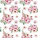 Field Flowers,handpainted,Cut Out,Square,No People,Watercolor Painting,Watercolor Paints,Single Flower,Flower,Blossom,Drawing - Art Product,Illustration,Clip Art,Seamless Pattern,Peony,Floral Pattern,Pattern,Multi Colored,Green Color