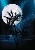 Night,Tropical Climate,Moon,Beach,Palm Tree,Tree,Island,Summer,Moonlight,Sky,Vector,Sea,Landscape,Backgrounds,Ilustration,Vertical,Vacations,Dark,Back Lit,Success,Nature,Travel Locations,Horizon,Light - Natural Phenomenon,Beaches,Nature,Remote,No People,Horizon Over Water,Illustrations And Vector Art