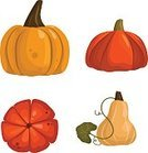 No People,Illustration,Autumn,Orange - Fruit,Pumpkin,Vector,Orange Color