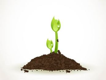 Realistic Green Sprouting Seeds