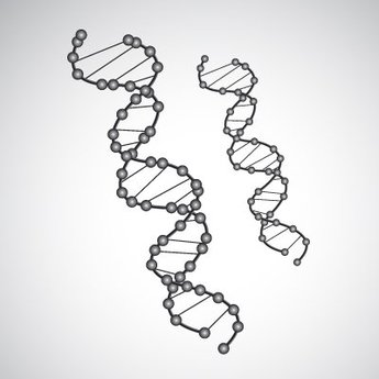 Free vector DNA