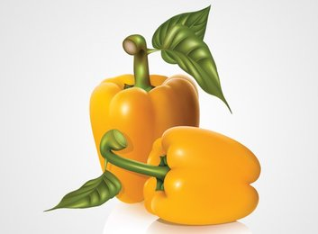 Sweet Yellow Bell Pepper Paprika