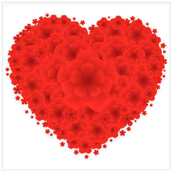 Love Red Flowers