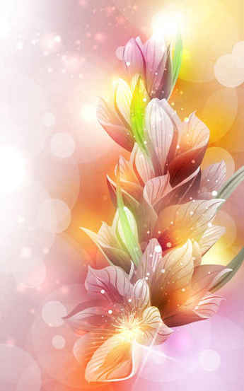 Pink Flowers with Colorful Background
