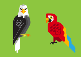 Tropical Birds Vector Pack