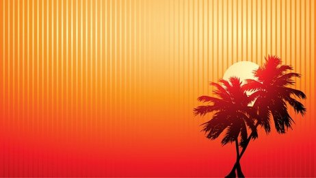 Sunset Vector Coconut Video