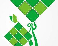 Icon Illustration Ketupat