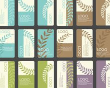 Business Card Designs Vector Set