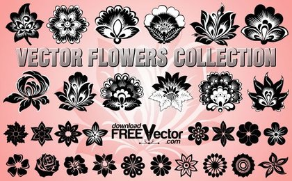 27 Vector flower buds