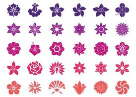 Flower Blossoms Graphics