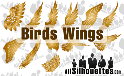 12 Vector Birds Wings