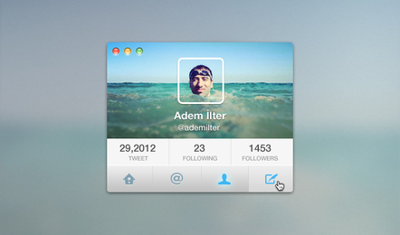 Twitter Interface