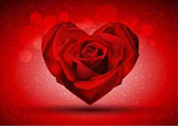 Red Rose in The Shape of Heart
