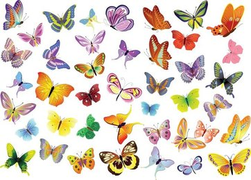 Free Vector Set Of Butterflies Decoration