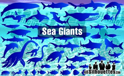 43 Sea & Ocean Giants