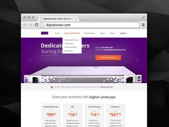 Hosting PSD Theme
