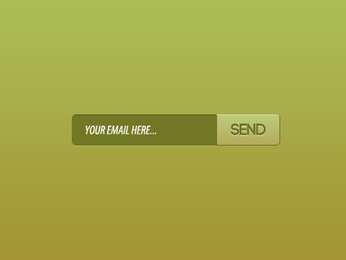 Email Sign Up interface