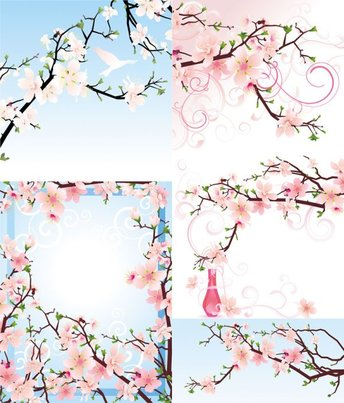 Beautiful Peach - Vector Beautiful Flowers Peach Branches