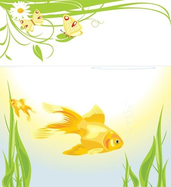 Goldfish Vector 3