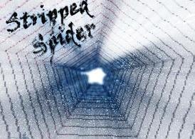 stripped spider pageground