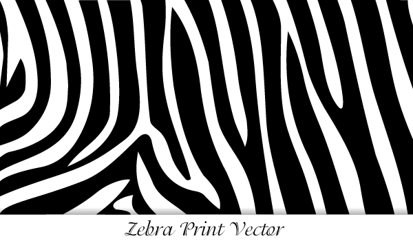 free zebra print psd files vectors graphics 365psd com