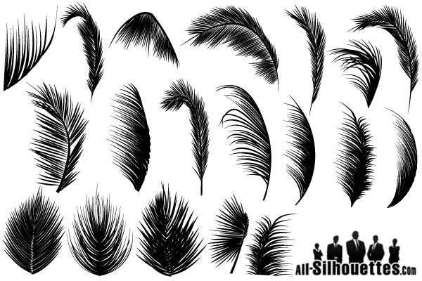 Palm Leaves Vector Free Vector Free File Download Now Download tropical leaves images and photos. palm leaves vector free vector free