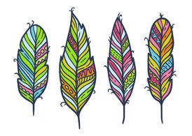 Free Feather Isolated Vector Set