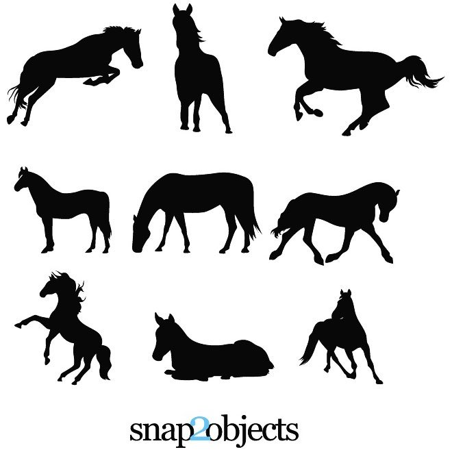 HORSE SILHOUETTES VECTOR.eps