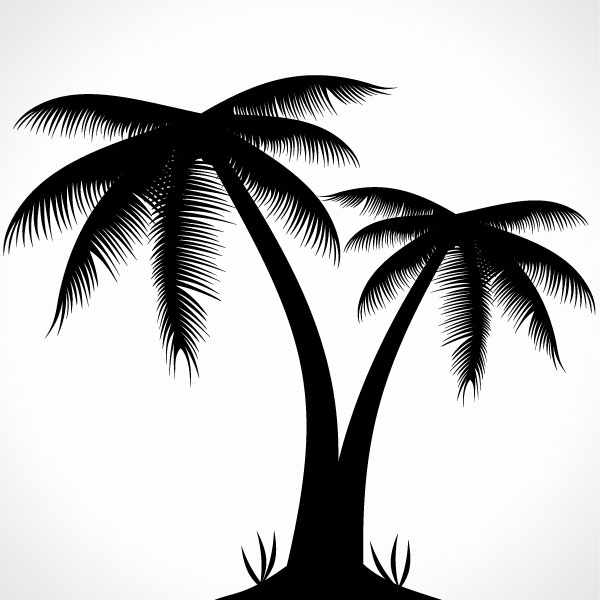 free palm tree silhouette psd files vectors graphics 365psd com rh 365psd com palm tree silhouette vector art free
