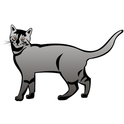 Grey And White Cat Vector Wallpaper