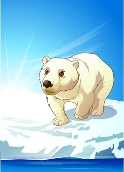 Polar bear 5