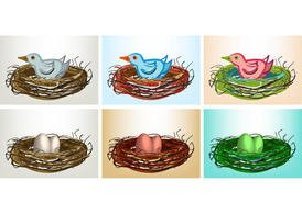 Free Vector Bird in Nest with Eggs and Birds