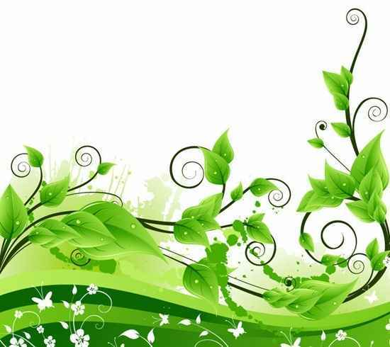Vector Green Floral Background