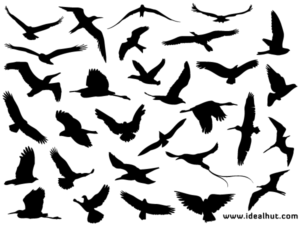 Free Flying Bird Silhouettes
