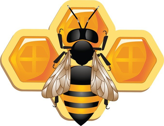 Cute 3D Bee And Honeycomb