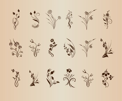 Set of Floral Design Element