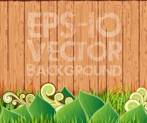 Green grass and leaf plant over wood fence background