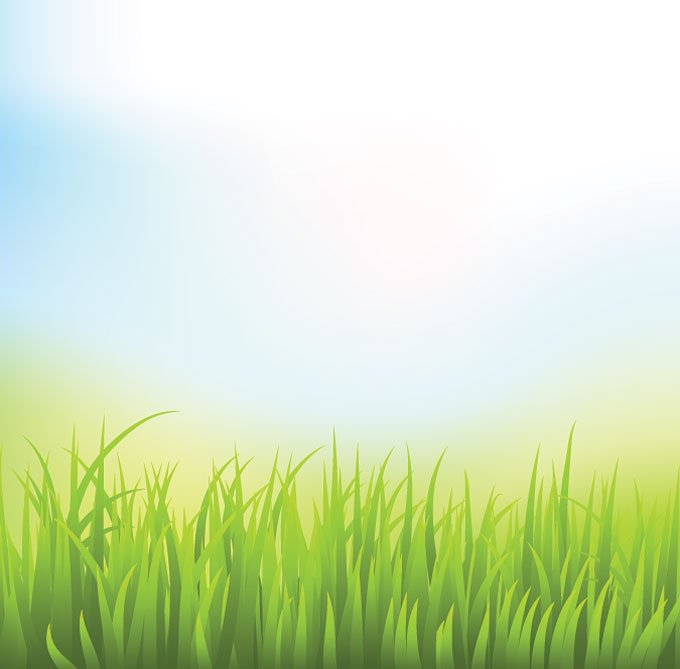 Abstract Green Grass Background with Blue Sky (Free)