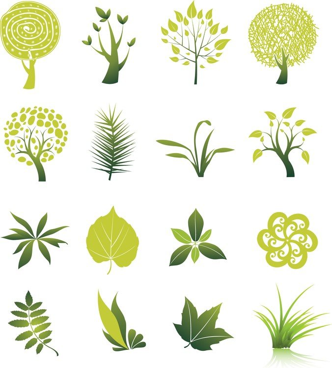 Tree And Leaf Vector Set