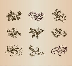 Vector Set of Vintage Floral Ornament Elements for Design