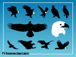 Silhouette Eagle Bird Pack