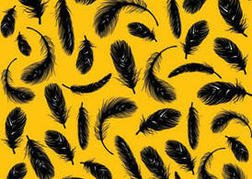 Feather Vector Pack